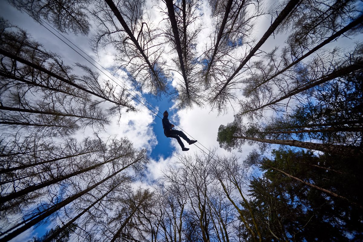 Silhoutte of a person on a zip wire in the forest