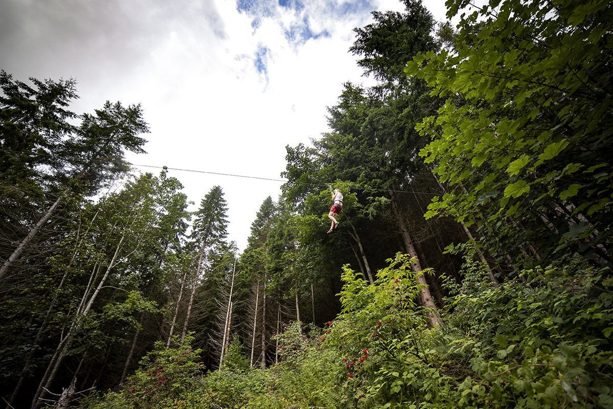 A person in red shorts ona zip wire with trees