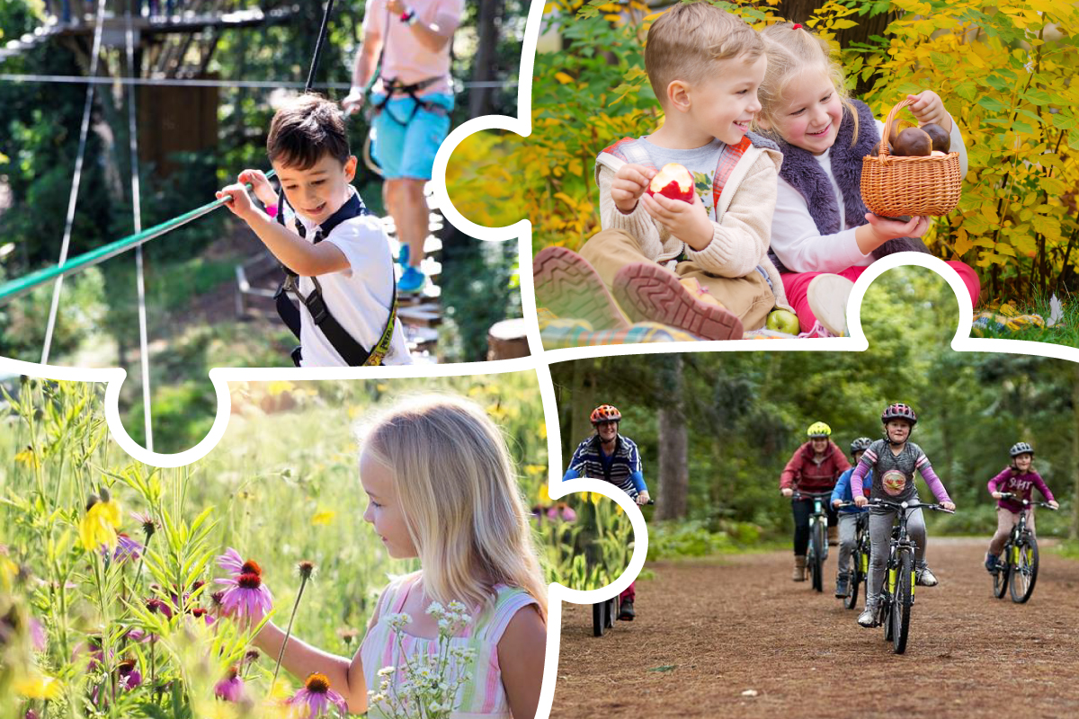 A complimation of images including Go Ape, a summer picnic, a girl amongst nature and cycling