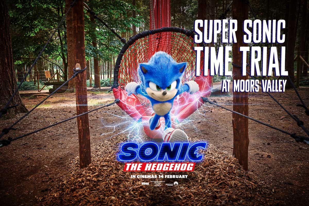 Sonic at Moors Valley